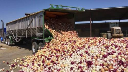 acf-to-northern-food-suppliers:-nigeria-not-at-war,-lift-ban-on-blockade-of-food-to-south